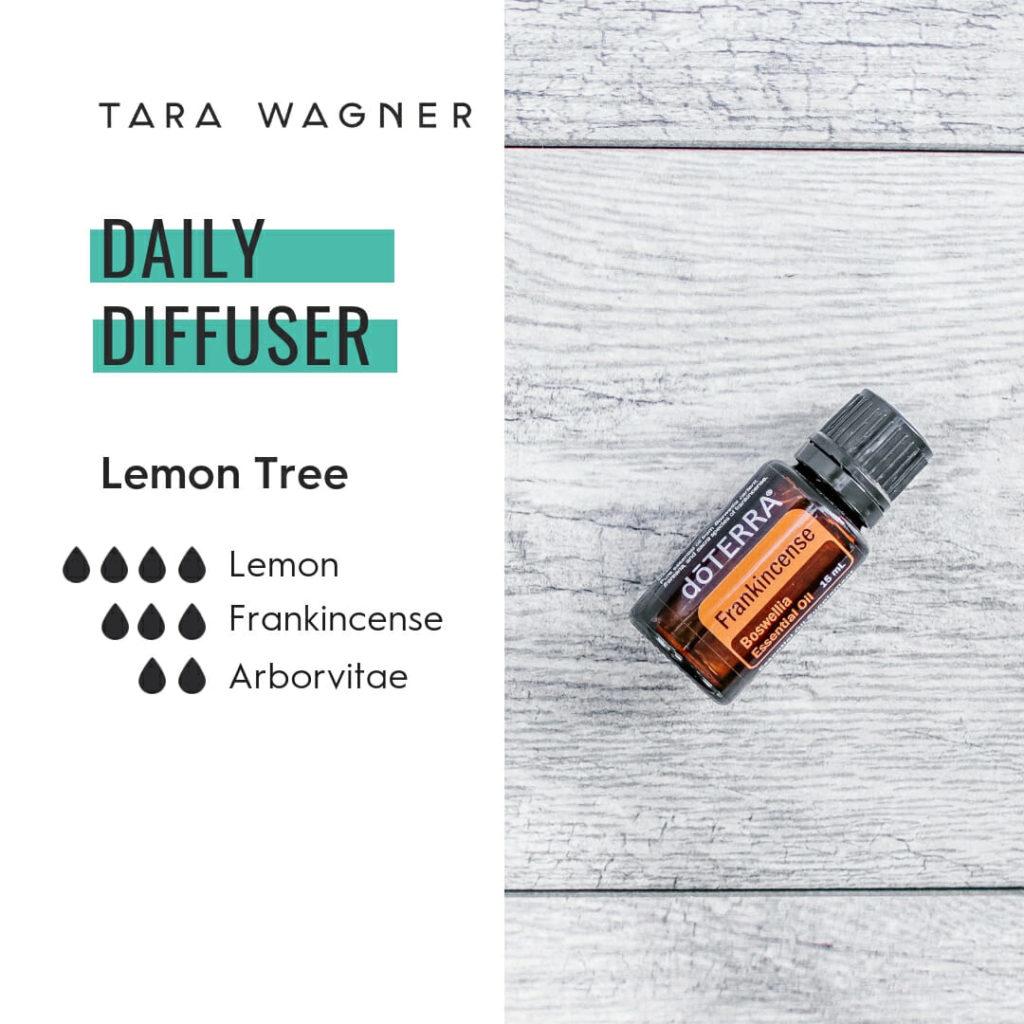 Diffuser recipe called Lemon Tree depicting the recipe: 4 drops lemon, 2 drops frankincense and 2 drops each arborvitae essential oils