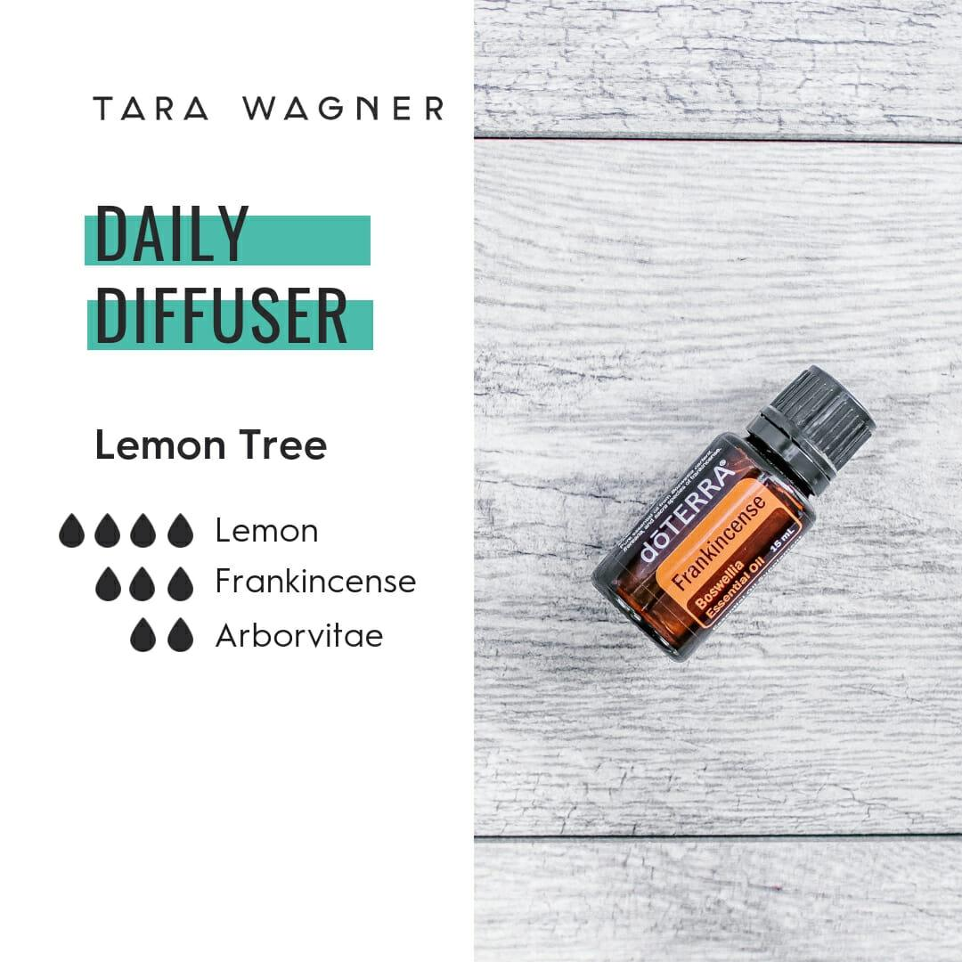 Diffuser recipe called Lemon Tree depicting the recipe: 4 drops lemon, 2 drops frankincense and 2 drops each arborvitae essential oils