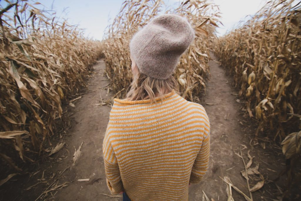 Woman in corn field, wearing a yellow sweater and cream beanie looking at 2 path options