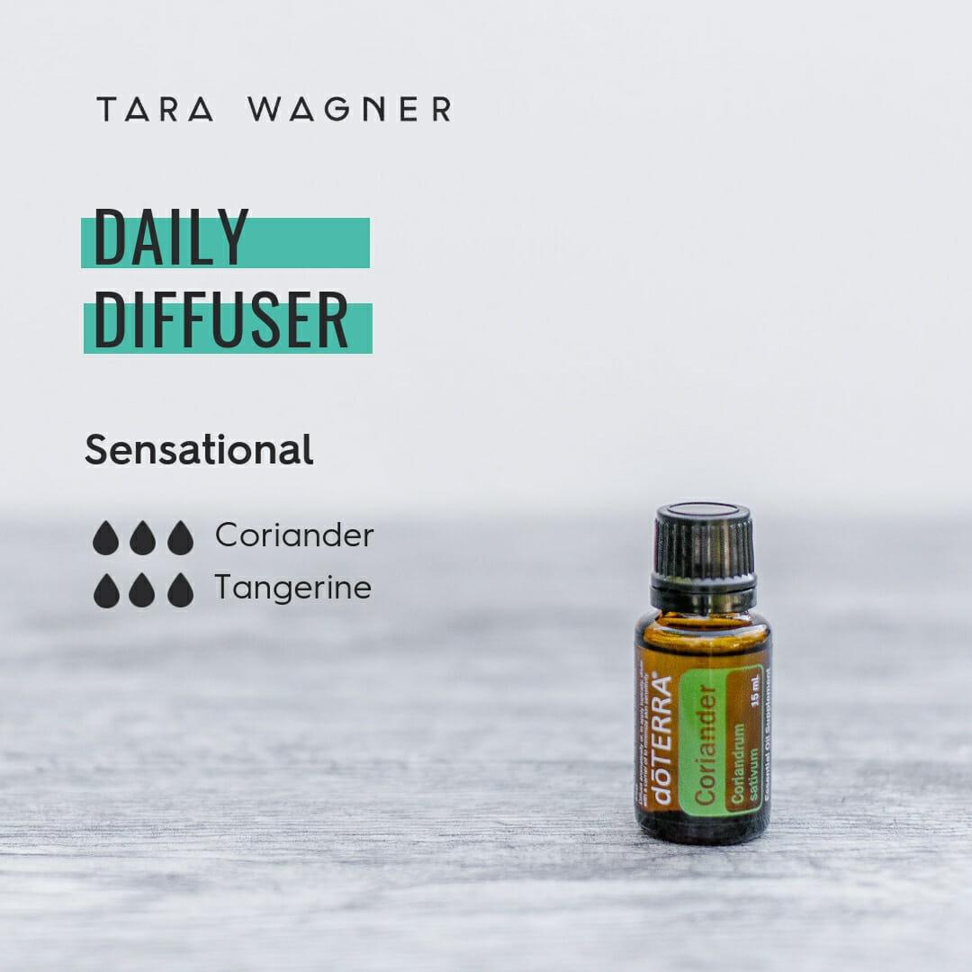 Diffuser recipe called Sensational depicting the recipe: 3 drops each of coriander and tangerine essential oils