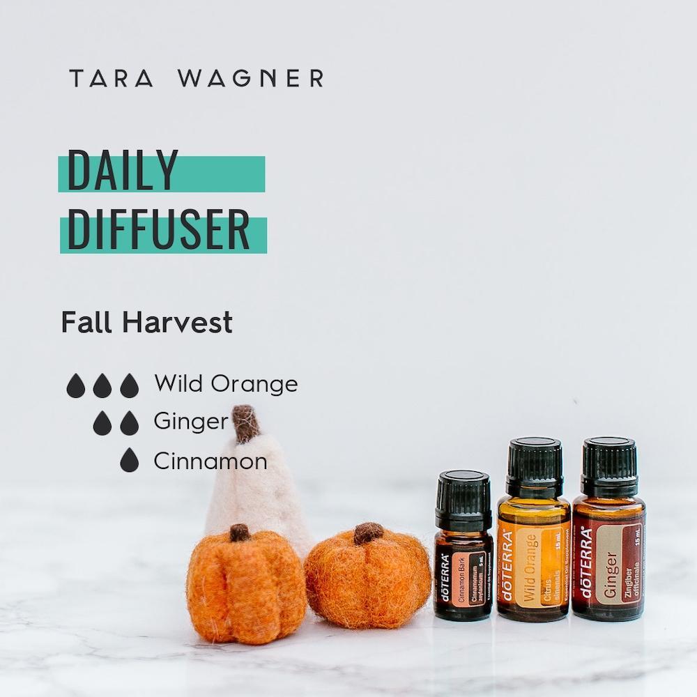 Diffuser recipe called Fall Harvest depicting the recipe: 3 drops wild orange, 2 drops ginger, and 1 drop cinnamon essential oils