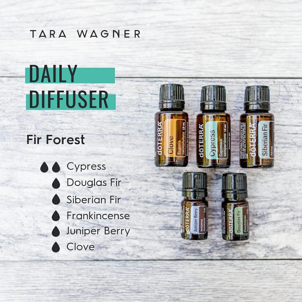 Diffuser recipe called Fir Forest depicting the recipe: 2 drops cypress and 1 drop each of Douglas fir, Siberian fir, frankincense, juniper berry, and clove essential oils