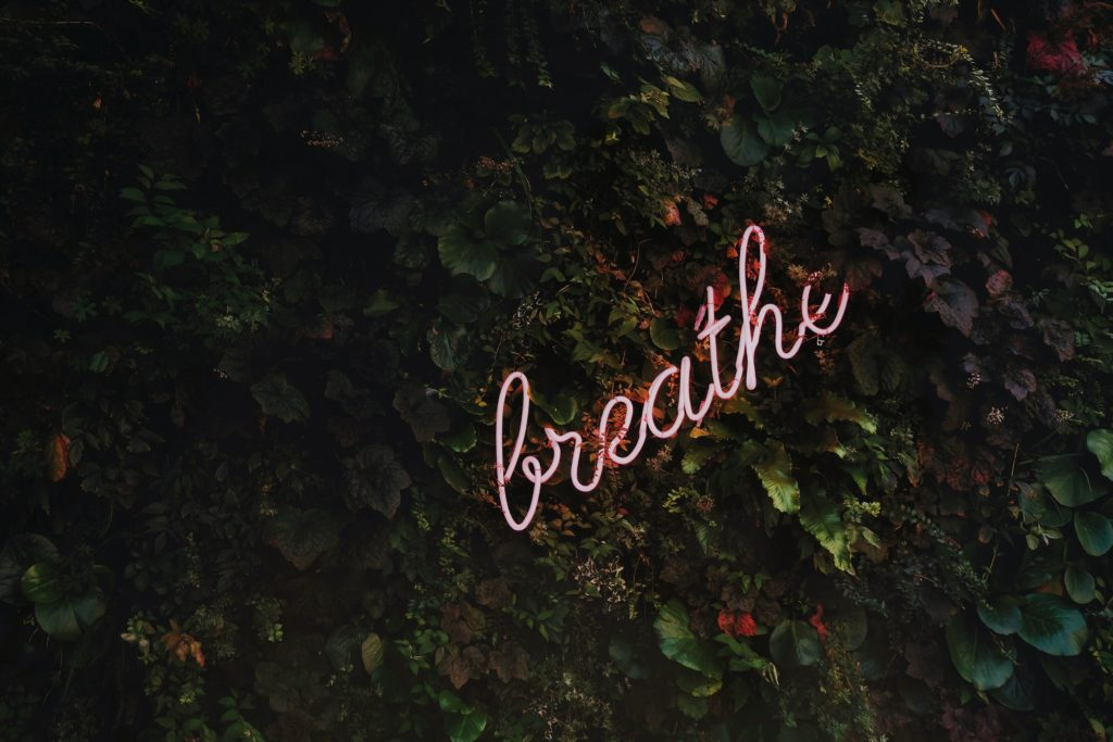 "Neon sign that says ""breathe"" in cursive with a moody leafy wall backgound"