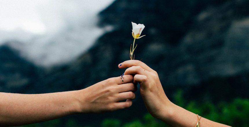 Handing over a flower
